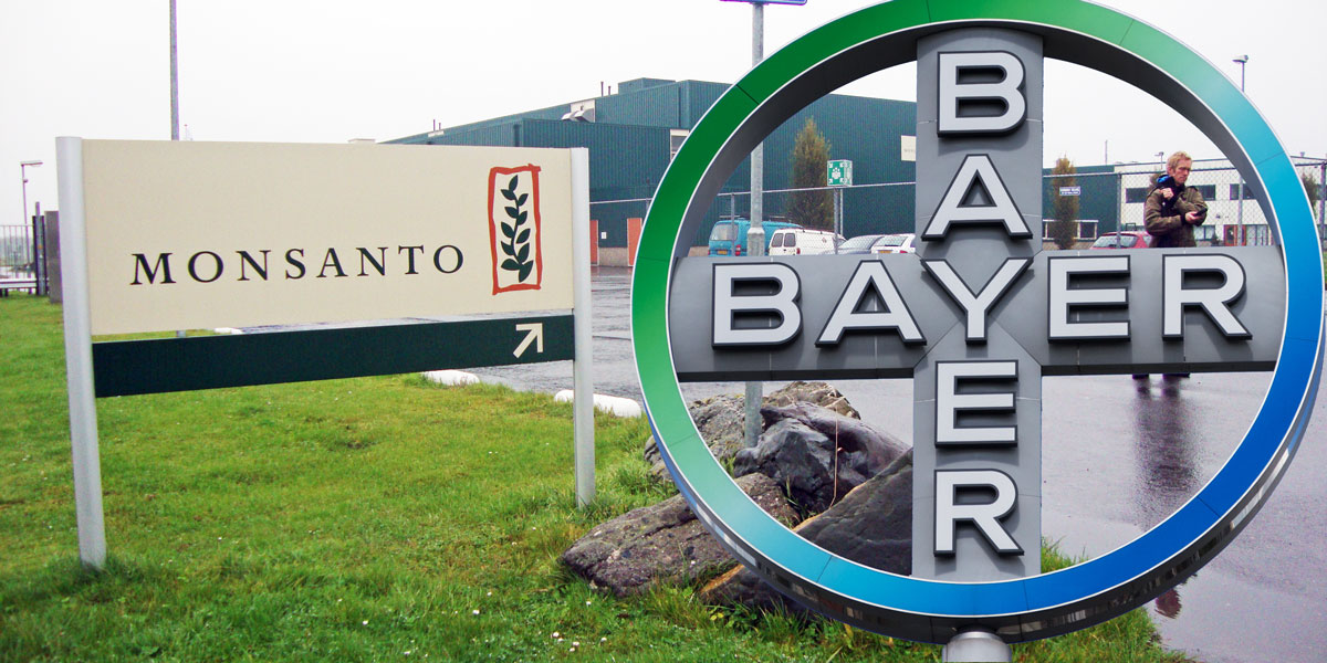 Monsanto and Bayer merger