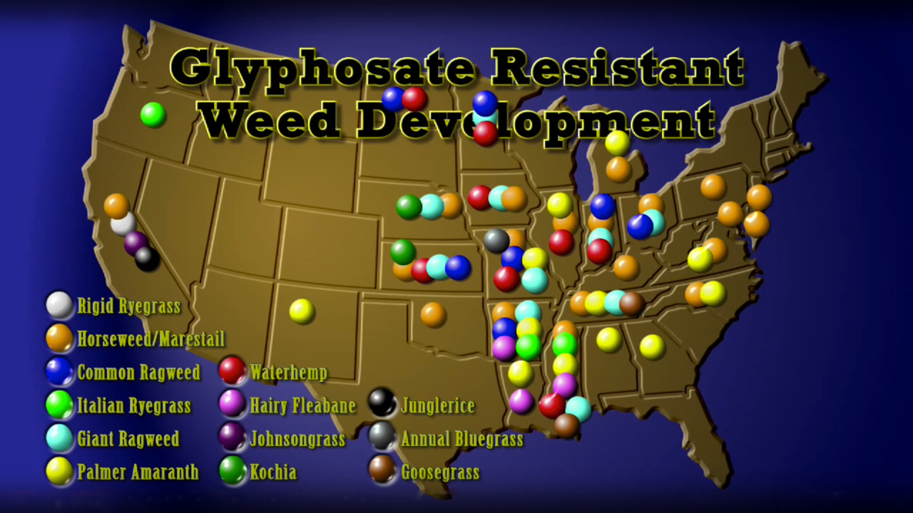 Superweeds: Glyphosate Resistant Weed Development