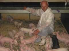 Danish pig farmer Ib Borup Pedersen 2