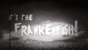 Stop Frankenfish
