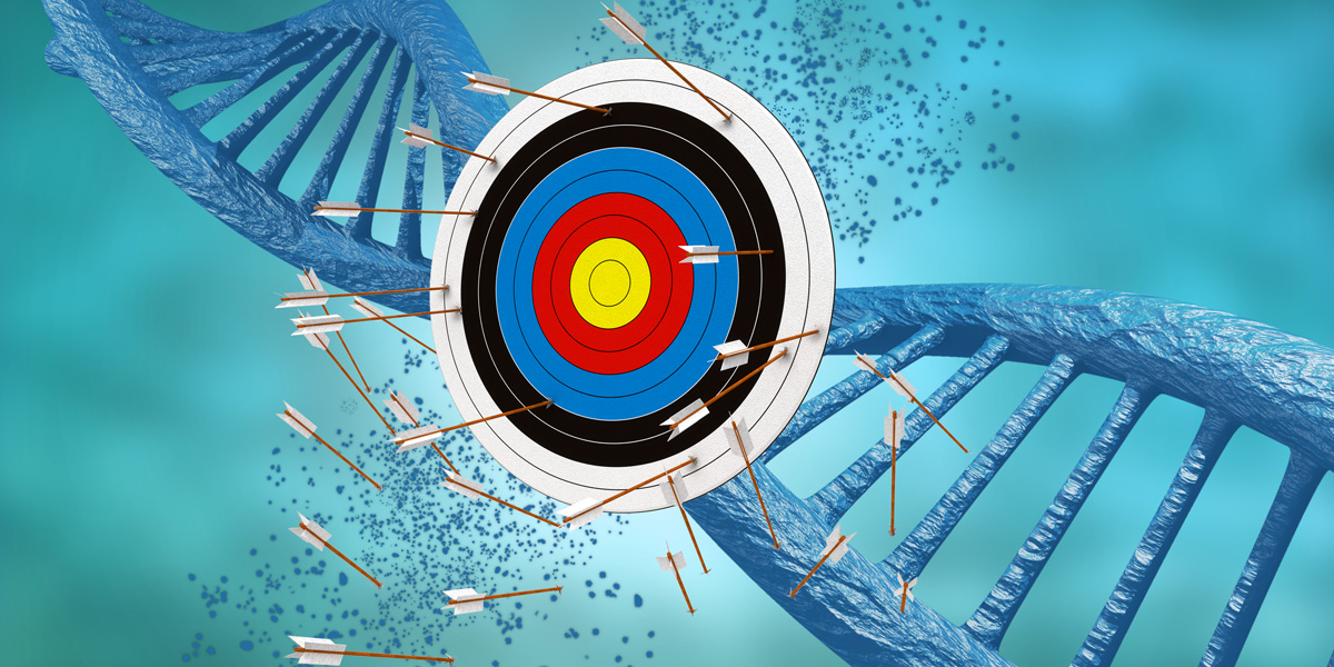 Arrows and Target and DNA