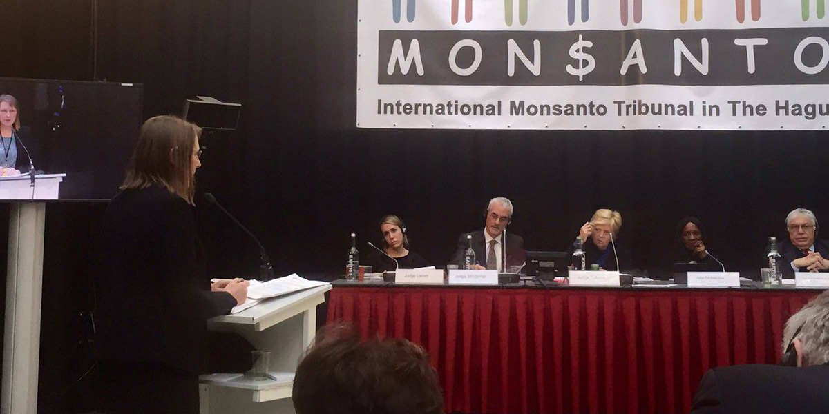 Claire Robinson gives evidence before judges at Monsanto Tribunal