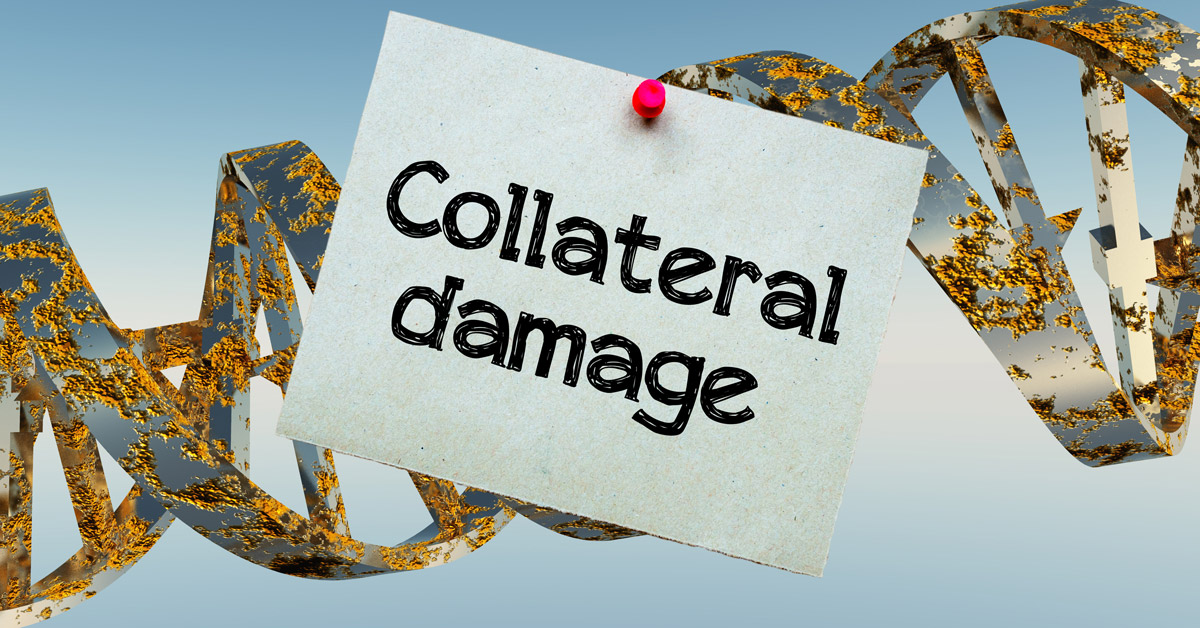 Damaged DNA strands and collateral damage