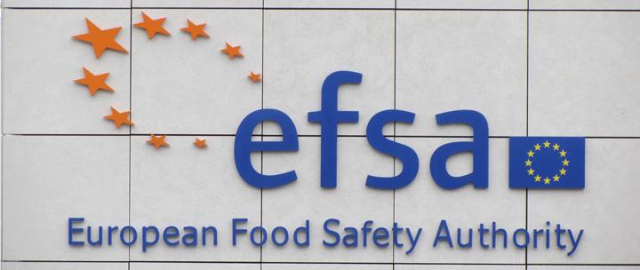 EFSA a dat aviz favorabil unui nou hibrid de porumb MG