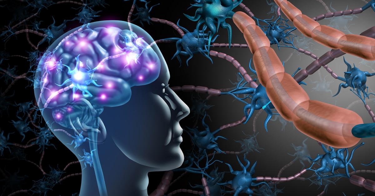 Endocrine disruptors and nervous system disruptors