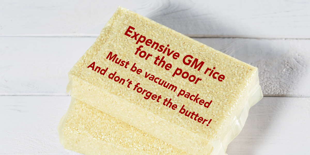 Expensive GM rice for the poor