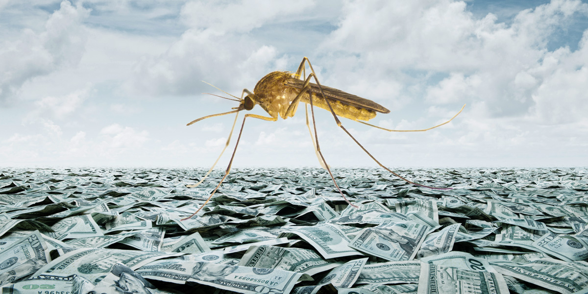 Mosquito on sea of dollars