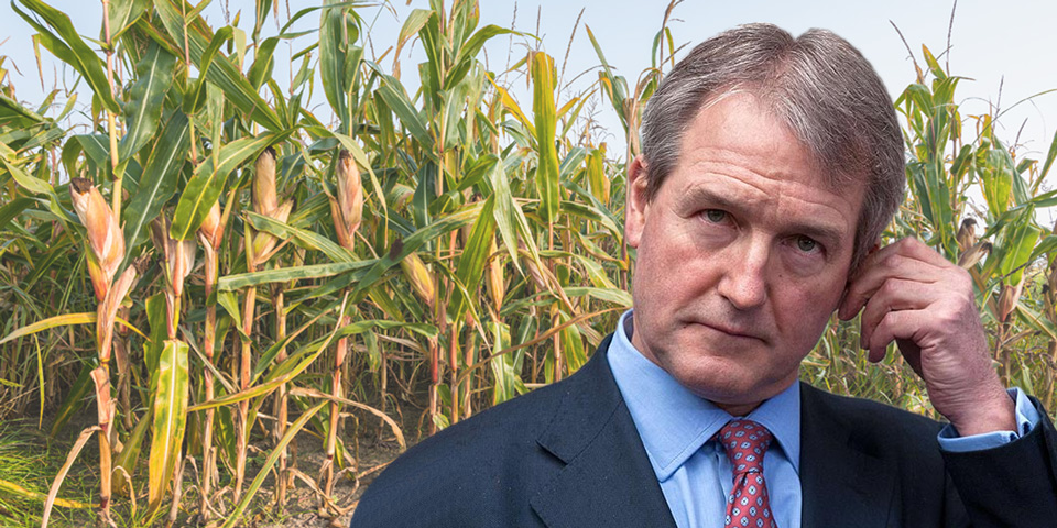 Owen Paterson and his GM Maize Myth