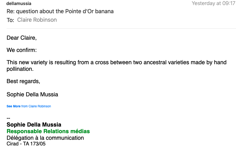 Question about the Pointe dOr banana message