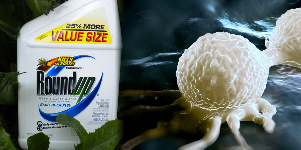Monsanto Roundup Glyphosate and cancer cells