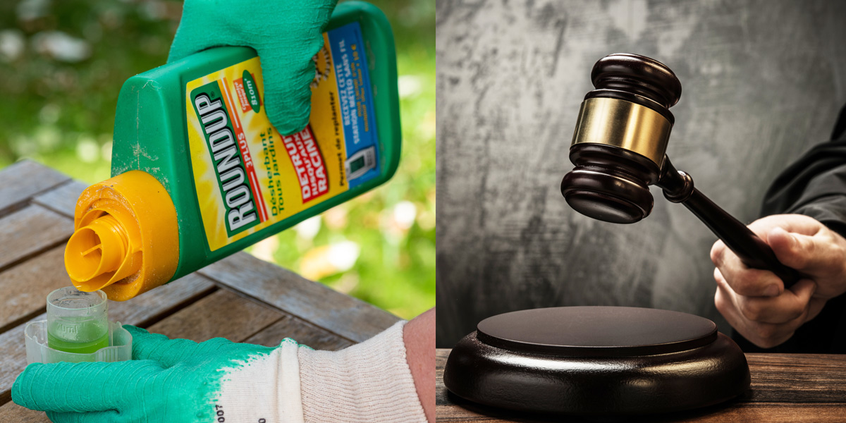 Roundup herbicide weedkiller and judges hammer