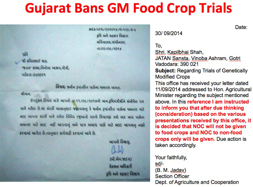 Gujarat bans GM trials