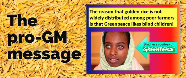 pro-gm golden rice message