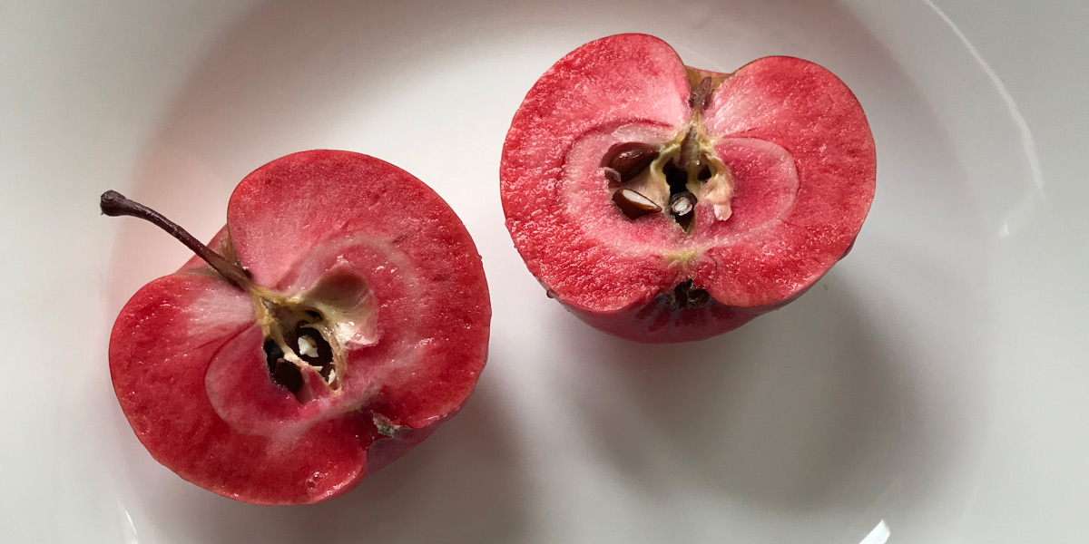 red flesh apples